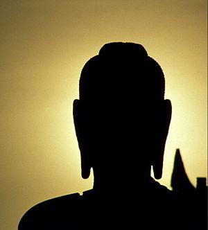 20090528121503-300px-buddha-sunset-crop.jpg